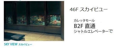 カレッタ汐留 46Fスカイビューの画像