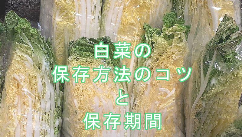 白菜の保存方法と保存期間 日持ちや白菜ダイエットのいい話し