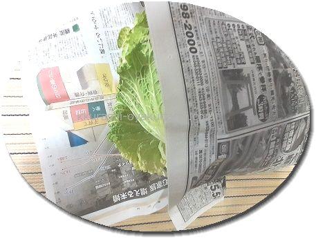 白菜を新聞紙で包む画像