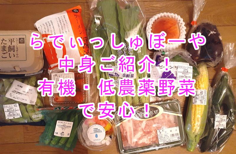 らでぃっしゅぼーやのお試し中身をレビュー 有機・低農薬野菜で安心!【送料無料】