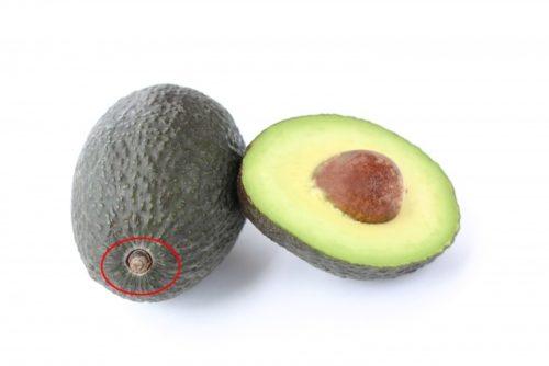 アボカドの農薬が残りやすい部分1㎝カットは赤丸ヘタのところ、画像